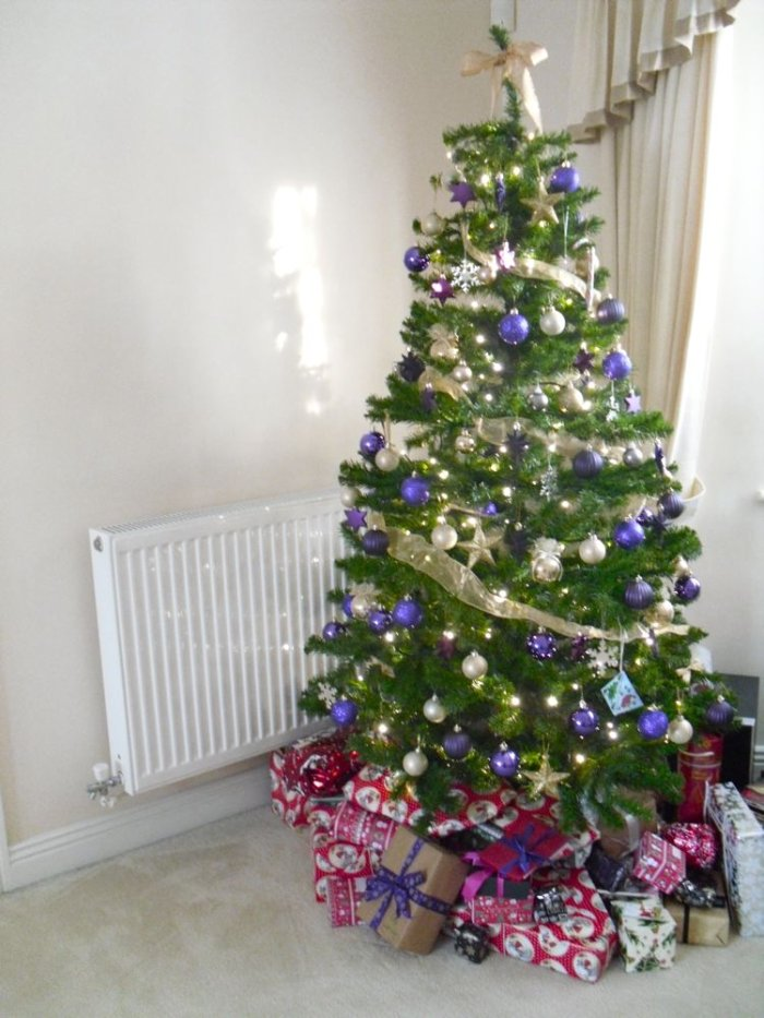 our tree_2011