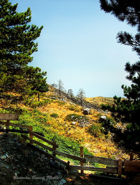 Parku Kombëtar i Llogarasë  6564703495_c7ea2cac0c_z
