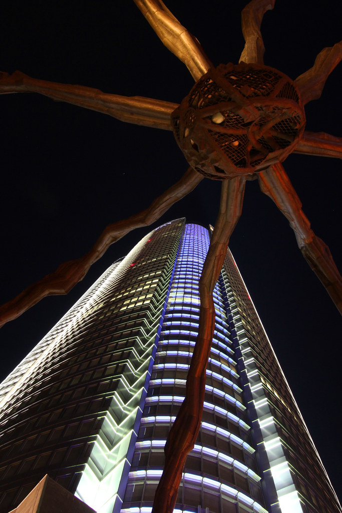 Roppongi Illumination 2011 (6)