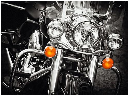 Harley Davidson *CutOut*