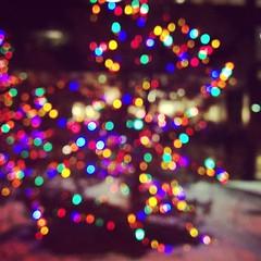 bokeh christmas