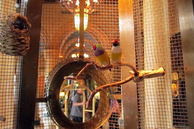 Birdcage Hotel Miami Beach