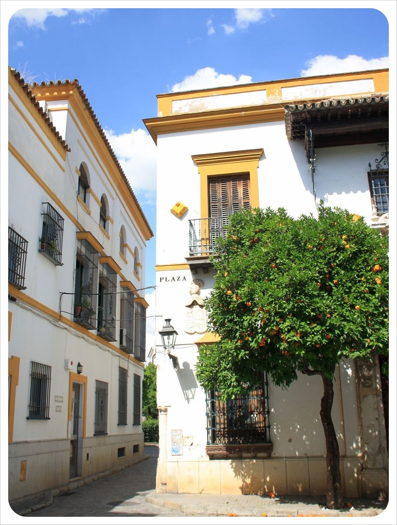 seville white houses