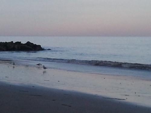 Edisti Island Beach by shoemap