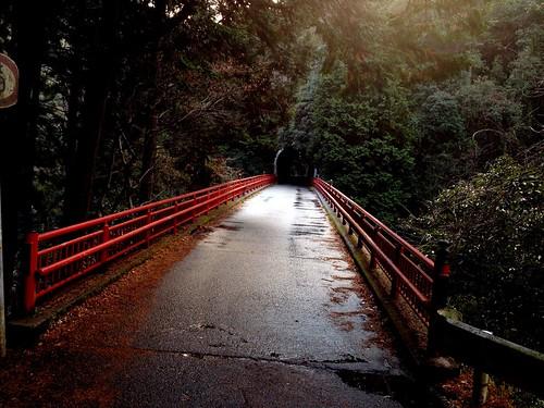 赤橋の向こうのトンネル by Nakai Nakaya