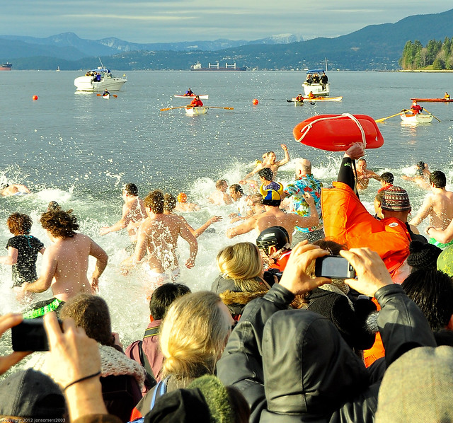 Polar Bear Swim 2012