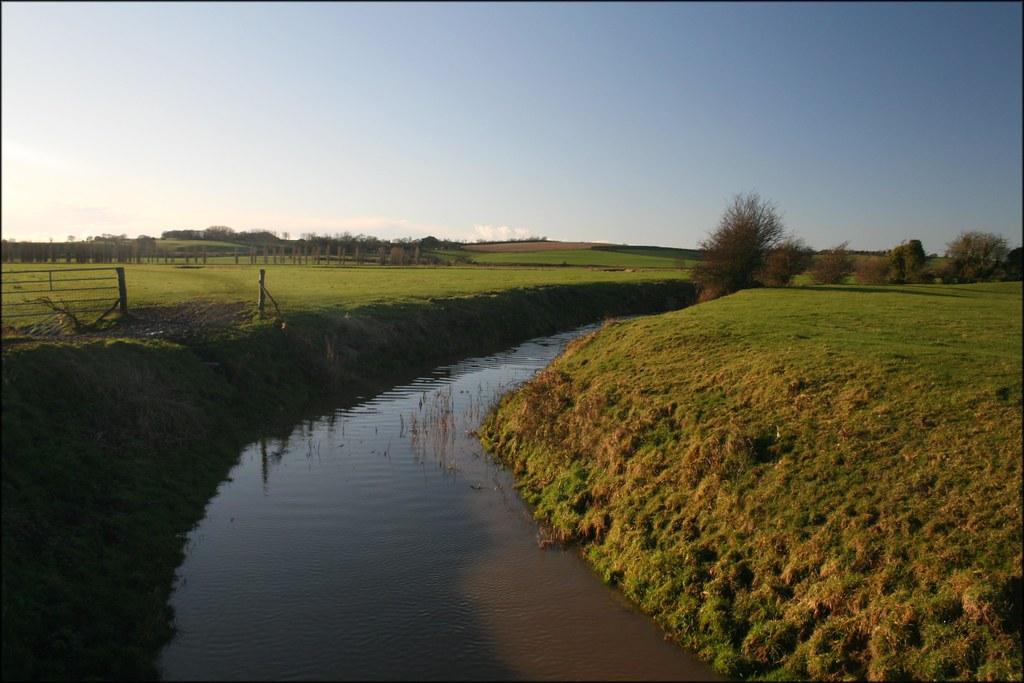 Marshland near Icklesham East Sussex.