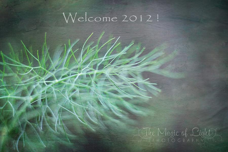 2012Blog