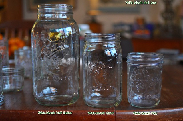 canning 101 a field guide to jars food in jars. Black Bedroom Furniture Sets. Home Design Ideas