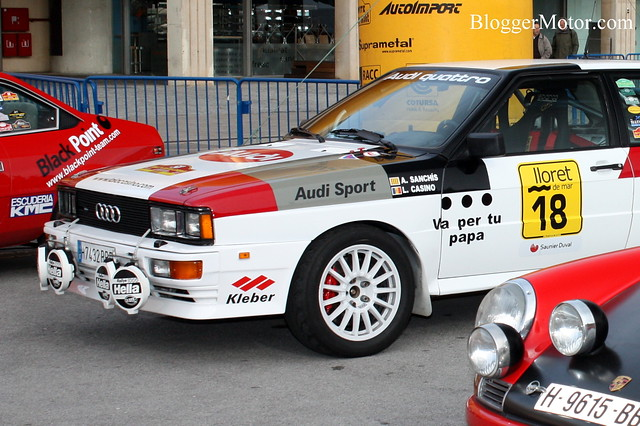 Audi Quattro Rally (II)