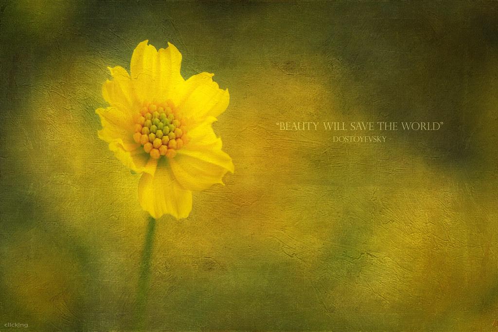 Beauty will save the world. #Fyodor #Dostoyevsky #beauty #
