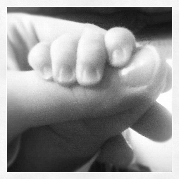 Day 12: Close up on some baby fingers. {swoon}