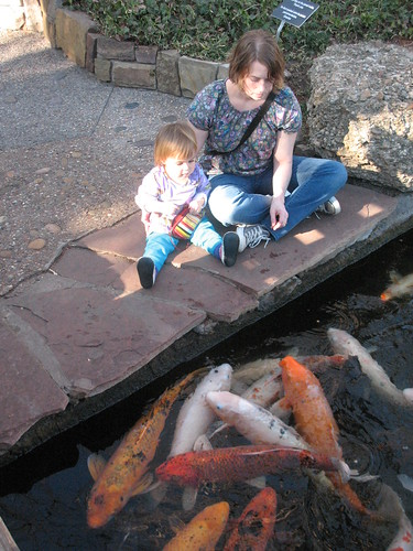 Feeding the fishies