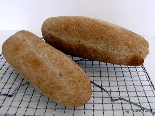 Wild Yeast Bread