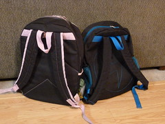 16/366- The Twins' Backpacks
