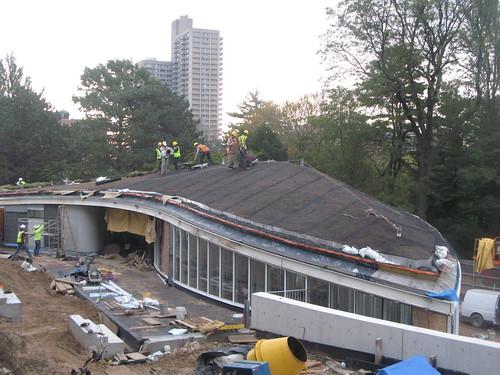 BBG's Living Roof