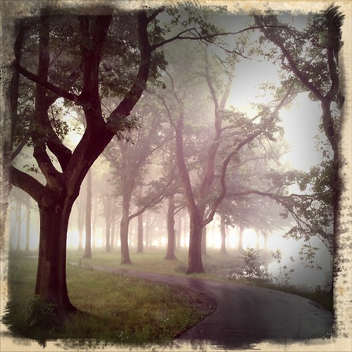 Morning in the Park by Ruamh