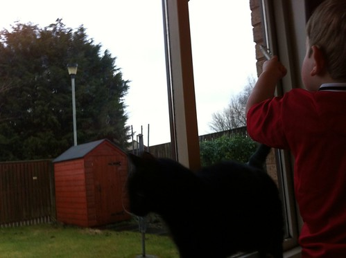 George and Owen help with #rspb #birdwatch by pointing out a blackbird