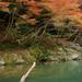 保津川:秋、嵐山景致
