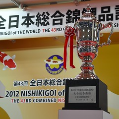All Japan Throphy