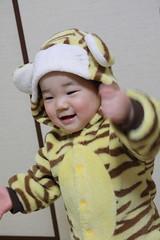 虎の着ぐるみ(2012/2/5)