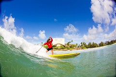 surface water sports, boardsport, sports, sea, surfing, wind wave, extreme sport, wave, water sport, stand up paddle surfing, surfboard, paddle,