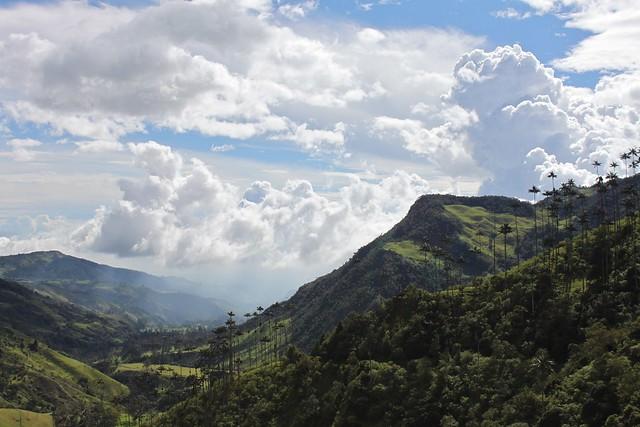 El valle de Cocora.