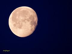 La Luna esta Mañana 19 03 2014