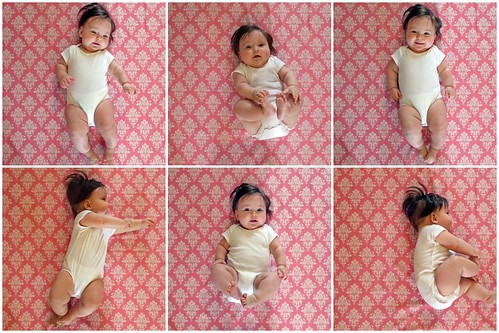 Six Months Collage