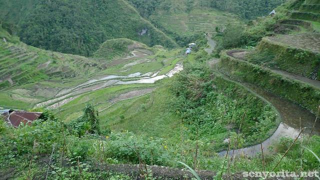 Batad-Ifugao-P2-120