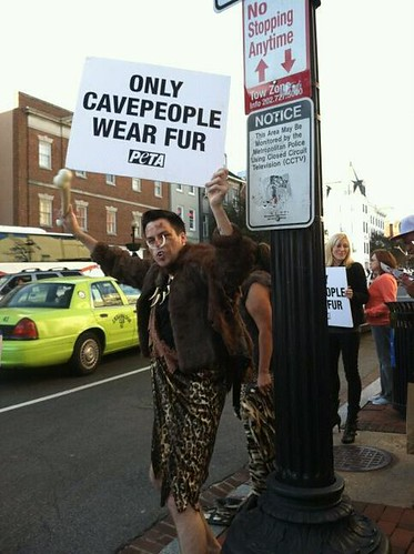 Fur Free Friday, by David Salisbury