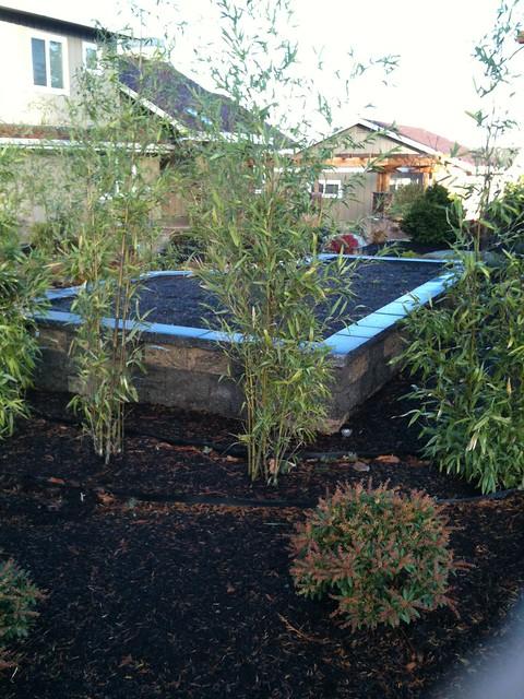 Edmons Residential Nov 2011 (6)