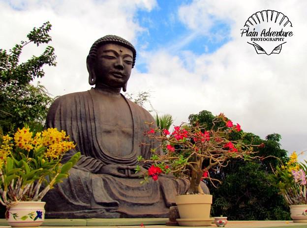 Lahaina Jodo Mission Buddha