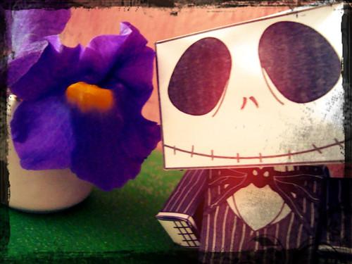 Rrrrrreceba as flores..que lhe dooooooou... :P