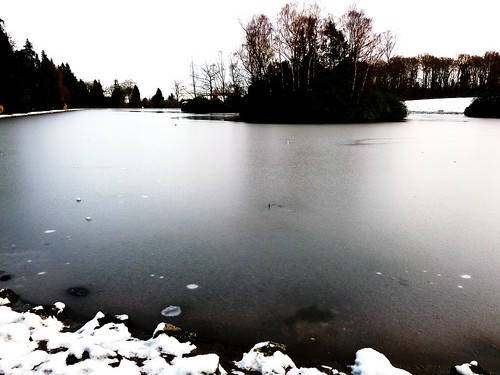Frozen Pond at Rouken Glen
