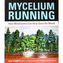 Cover of Mycelium Running features a forest illustration and the words How Mushrooms Can Help Save the World