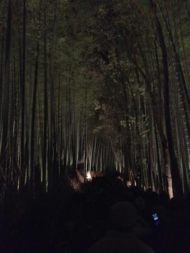 竹のアーチ