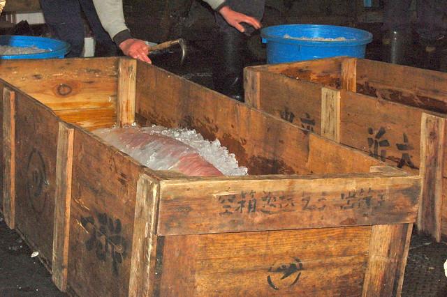 Tsukiji Fish Market_7