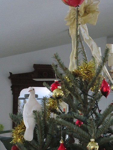 doves: