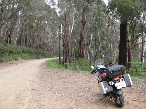 Omeo highway, more gravel bits
