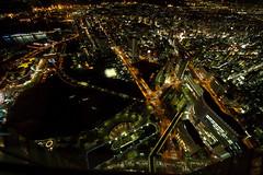 View from Yokohama Landmark Tower