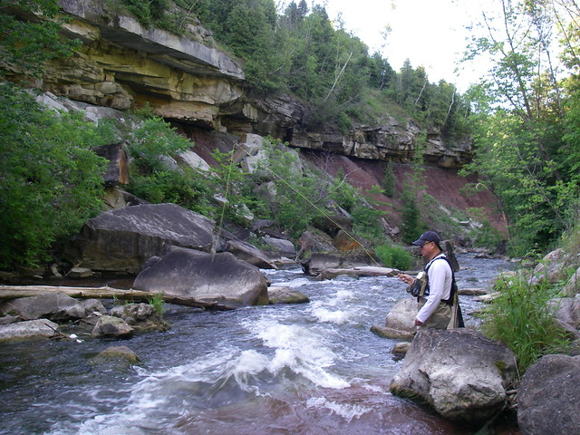 Fast head waters of the Credit River