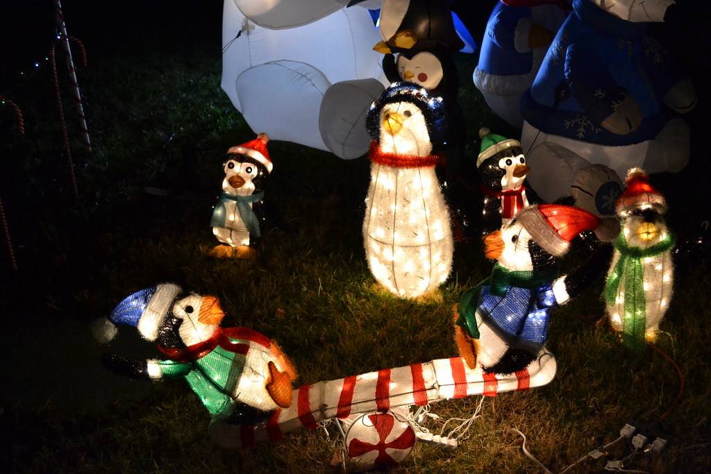 dsc 0035 penguin time penguin outdoor christmas decorations - Penguin Outdoor Christmas Decorations