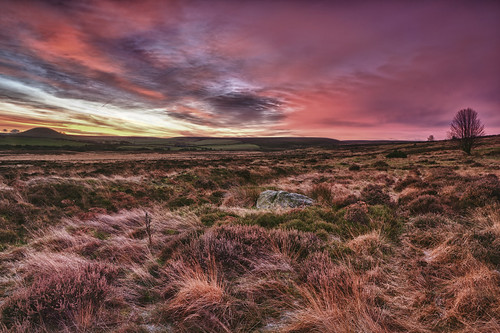North Yorkshire Moors at Sunrise