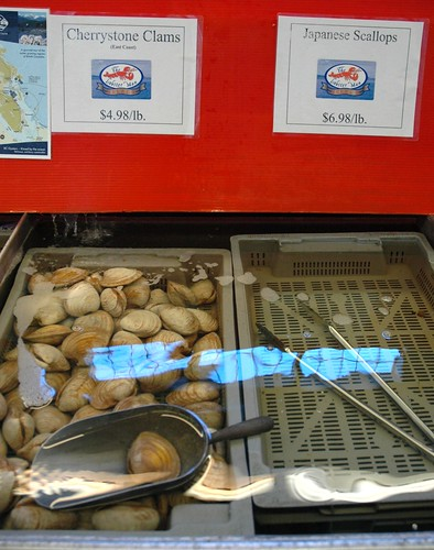 Running water over Cherrystone Clams (East Coast), $4.98 / lb, scoop, empty tray, fish market, The Lobster Man, Life Release Project (for crabs), Vancouver B.C., Canada by Wonderlane