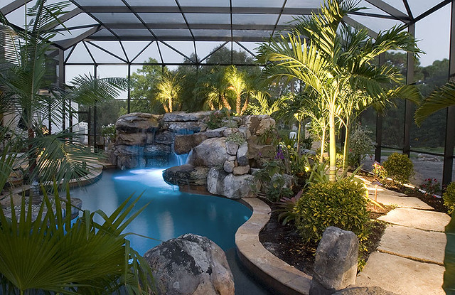 Landscaping Around A Group Of Trees : Landscaping swimming pool tropical plants sarasota bradenton florida