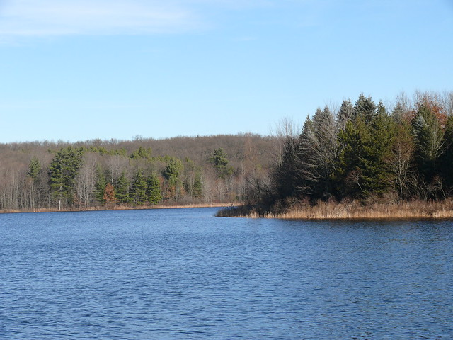 Pickerel Lake