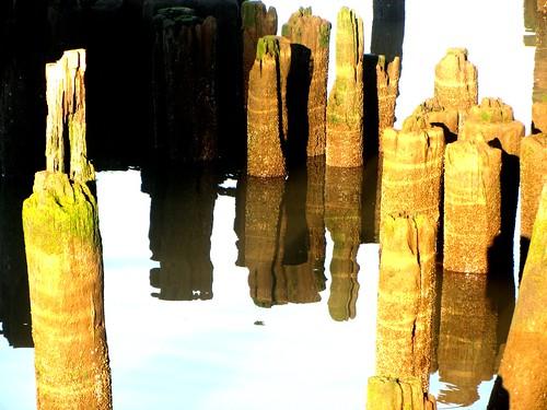 pilings