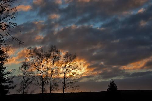 sunrise somerset daybreak quantocks staplewoods