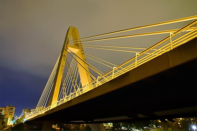 Pont de la Generalitat Bridge